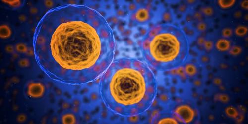 Отбелязваме Световния ден на редките болести